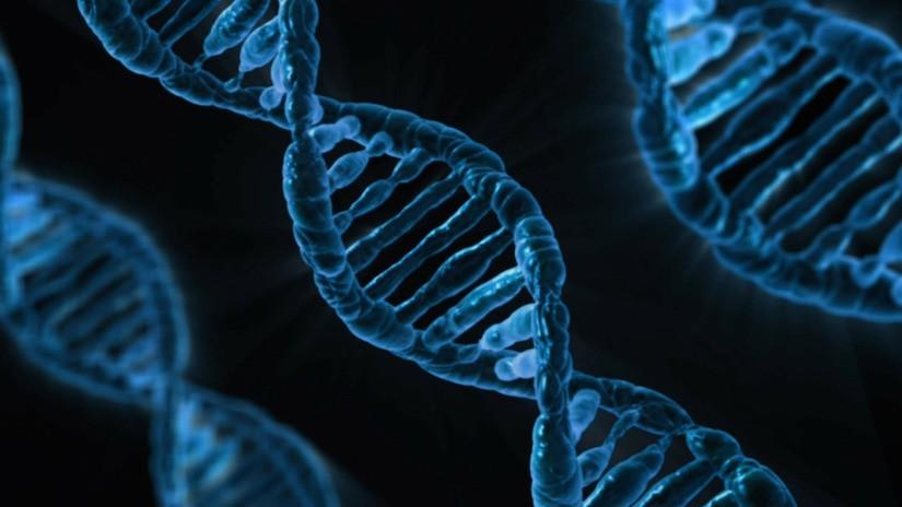 Ethik in der Stammzellforschung